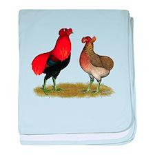 Araucana Chickens baby blanket