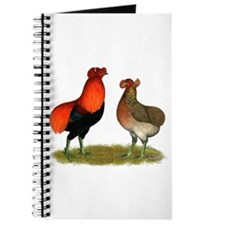 Araucana Chickens Journal