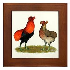 Araucana Chickens Framed Tile