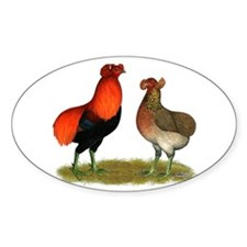 Araucana Chickens Decal