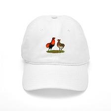 Araucana Chickens Baseball Cap