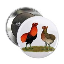 "Araucana Chickens 2.25"" Button (100 pack)"