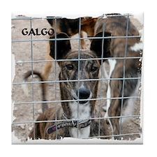 Spanish Galgo Tile Coaster