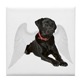 Black labrador Drink Coasters