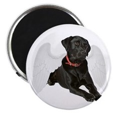 Black Lab Angel Magnet
