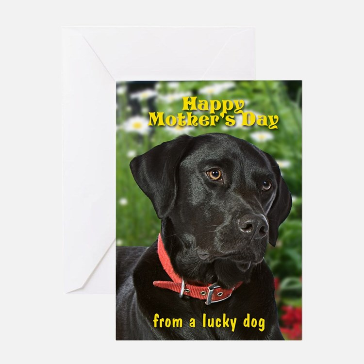 Black Lab Mother's Day Card