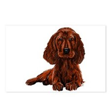Irish Setter Postcards (Package of 8)