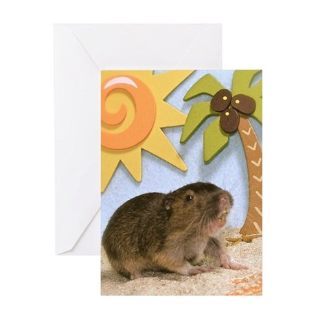 Gopher Beach Card