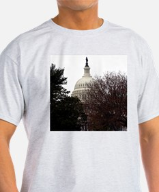 Nation's Capitol Ash Grey T-Shirt