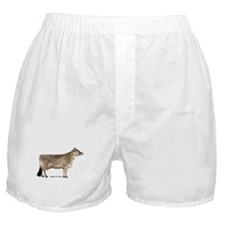 Brown Swiss Dairy Cow Boxer Shorts