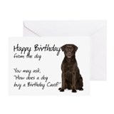 Chocolate lab Greeting Cards