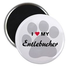 I Love My Entlebucher Magnet