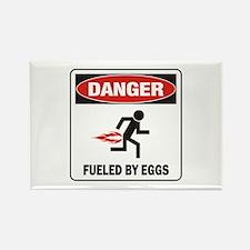 Eggs Rectangle Magnet
