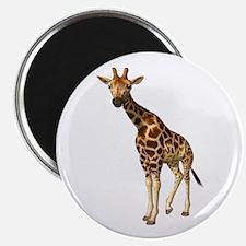 The Giraffe Magnet