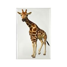 The Giraffe Rectangle Magnet