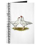 Ixworth Chickens Journal