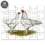 Ixworth Chickens Puzzle