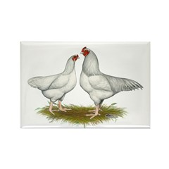 Ixworth Chickens Rectangle Magnet