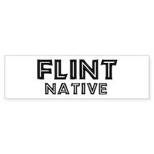 Flint Native Bumper Bumper Sticker