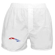 """Pixel Cuba"" Boxer Shorts"