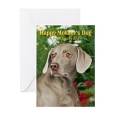 Weimaraner Mother's Day Card