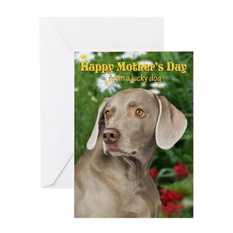 Weimaraner Mothers Day Card by shopdoggifts – Weimaraner Birthday Cards