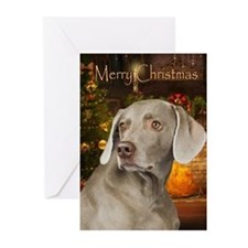 Weimaraner Holiday Cards (Pk of 10)