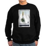 National Parks - White Sands 2 1 Sweatshirt (dark)