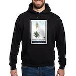 National Parks - White Sands 2 1 Hoodie (dark)