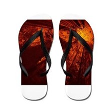 The Tawny Buck Collection Flip Flops