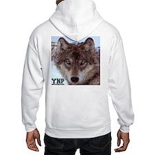 Wolf YNP, Wyoming Hoodie