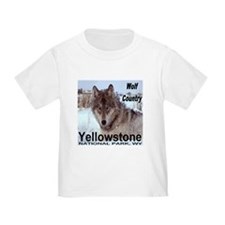 Wolf YNP, Wyoming T