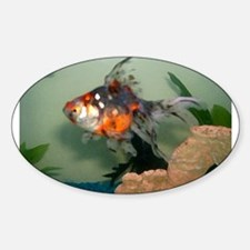 Gold Fish Sticker (Oval)