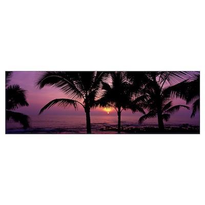 Palm Trees Kailua-Kona The Big Island HI Poster