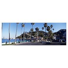 Santa Catalina Island CA Poster
