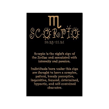 Scorpio Rectangle Magnet (100 pack)
