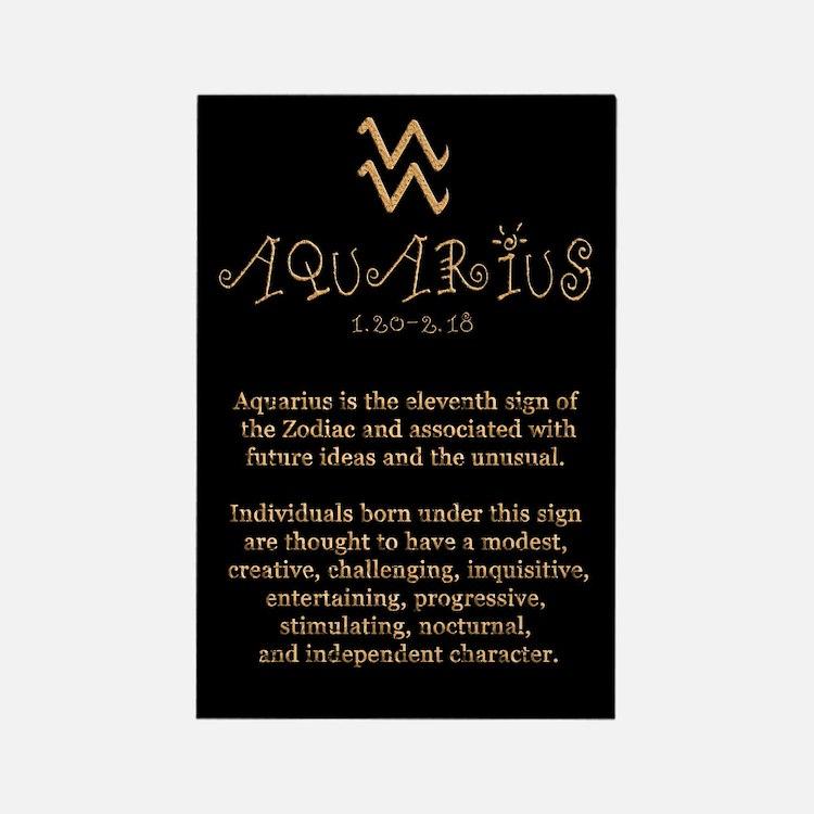Aquarius Rectangle Magnet
