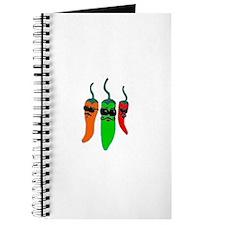 Fiery Amigos Journal