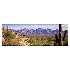 Golf Course Tucson AZ Poster