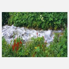 Grand Teton National Park WY
