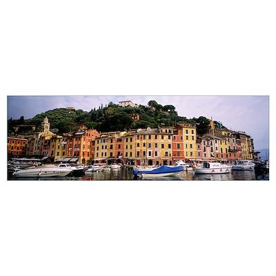 Harbor Houses Portofino Italy Poster
