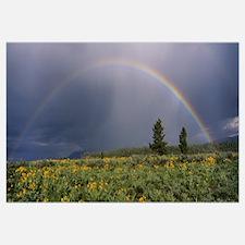 Rainbow Grand Teton National Park WY