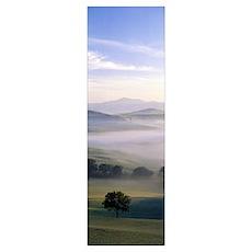Fields Tuscany Italy Poster