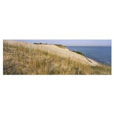 Indiana Dunes IN Poster