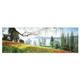 Acacia tree and yellow meskel flowers Posters