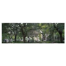 Whitefield Square Historic District Savannah GA Poster