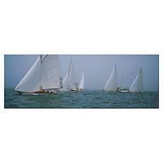 Wooden Boat Regatta Newport RI Poster