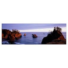 Oregon, Otter Point Poster