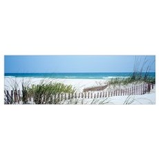 Fence Beach AL Framed Print