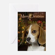 Beagle Holiday Cards (Pk of 10)
